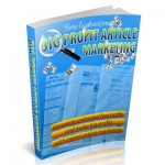 Big Profit Article Marketing